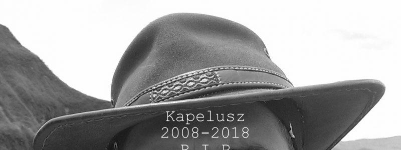 Spod kapelusza